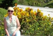 Счастливый кротон (остров Сент-Люсия)