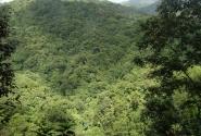 Морн-Труа-Питон (остров Доминика)