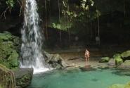 Эмералд-Пул (Морн-Труа-Питон, остров Доминика)