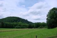 Немецкие поля, луга