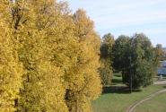 тоже осень