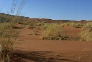Пустыня Намиб. Тени
