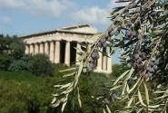 Дар Афины
