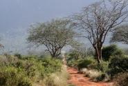 Ландшафты Африки - Кения