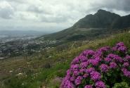 Ландшафты Африки - ЮАР