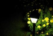 Ночной сторож