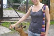 Дочь - предводительница коз))