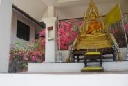 Будда и ко.