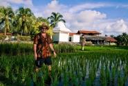 чтобы оплатить номер, приходилосб работать на рисовых плантациях :))