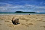 кокос, принесенный морем...