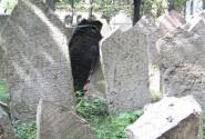 Где-то здесь надгробие создателя Голема Раби Лева