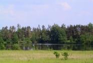 Природа Белоруссии