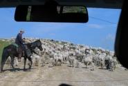 На пути к Эльбрусу
