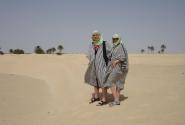 В Сахаре под +50