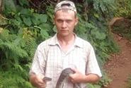 Удав в лесах масуала
