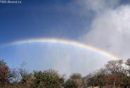 вечная радуга