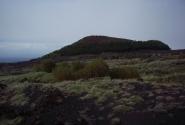 Лысая гора.