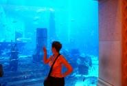 я около аквариума