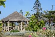 Сад парка Монтаза