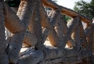 Пальмовый мост