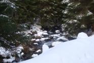 Вот такие горные речушки в Закопанах