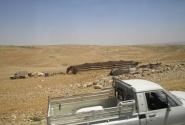 Житие-бытие бедуинов
