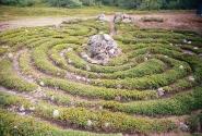 Заяцкий остров, лабиринт