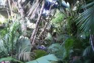 в Майской долине на Праслине