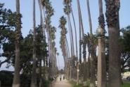 Аллея на набережной Санта Моники