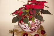 Вилла Элизабет, украшения к Рождеству