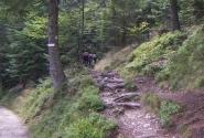 пора в горы...