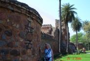 У древних стен