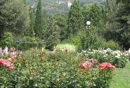 Ботанический сад в Яоте