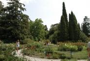Вид с Ботанического сада