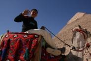 бедуин на верблюде (и за это обычно денегпросят)