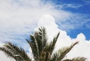 Про облака