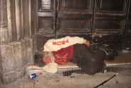 Завтра опять в Тибре попробую золотую рыбку поймать