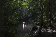 Уникаьное место где-то на реке Атигуанико - глубина тут около 3х метров