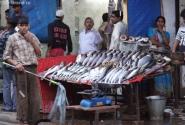 Продавец рыбы с опахалом