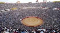 Стадион для корриды в Барселоне может превратиться в мечеть