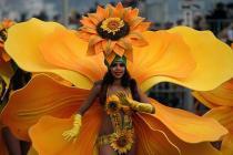 На карнавал в Ниццу