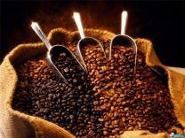 Названо место, где подают лучший кофе в Брно