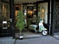 Амстердам хочет сохранить право продажи марихуаны туристам