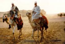 Зачем бедуины захватили отель?