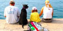 Хорватия ждет на отдых туристов с собаками