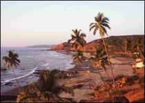 Туристический рай в южной части Гоа затянуло нефтяной пленкой
