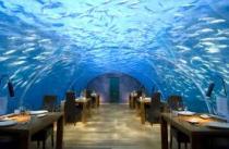 Мальдивский отель предлагает молодоженам остановиться в подводном номере