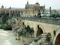 Автобусные экскурсионные туры появятся в испанской Кордове