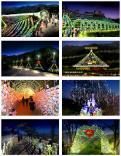 Фестивали света в зимней Корее