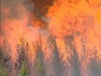 Пожар на хорватском острове не причинил неудобств туристам